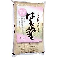 【精米】山形県 無洗米 1等米 はえぬき 5kg 令和元年産