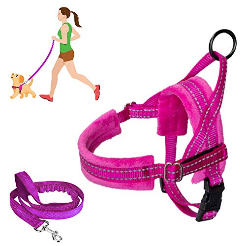 SlowTon No Pull Small Dog Harness and Leash, Heavy Duty Easy To Walk Vest Harness Soft Padded Reflective Adjustable Puppy Harness Anti-Twist 4FT Pet Lead Quick Fit Lightweight for Small Dog Cat Animal