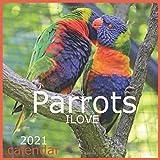 ILOVE Parrots: Calendar 2021 Wall Calendar Monthly Calendar 12 Month