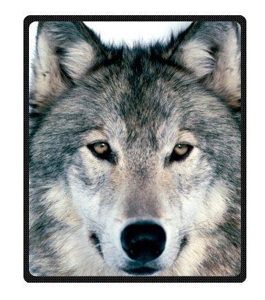 YISUMEI - Manta de forro polar suave – Lobo atrapado, manta de 150 x 200 cm, adecuada para cama o sofá