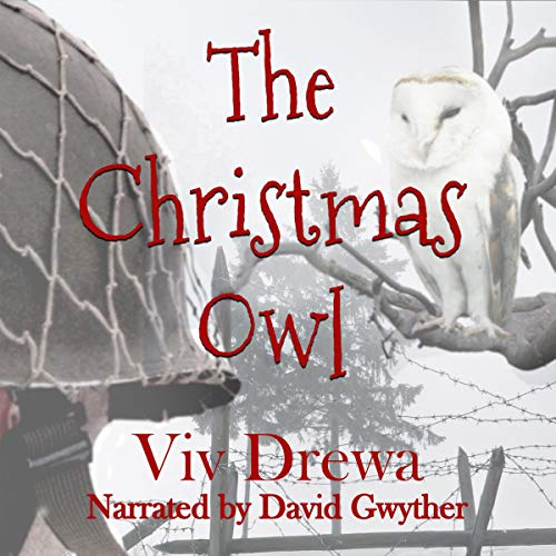 The Christmas Owl Audiobook By Viv Drewa cover art