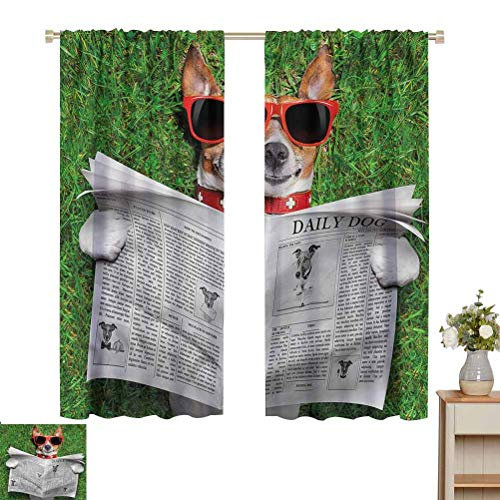 June Gissing Funny Curtain for Bedroom Park Dog Reading Newspaper Thermal Insulated Blackout Patio Door Curtain Panel W63 x L72 Gifts for Best Friend