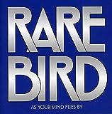 Songtexte von Rare Bird - As Your Mind Flies By