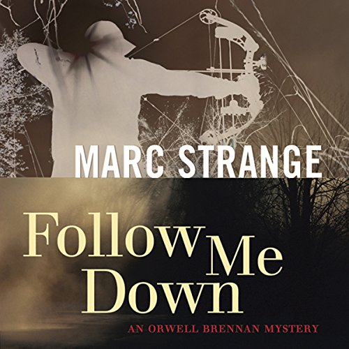 Follow Me Down audiobook cover art