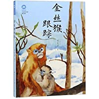 Tracking the Golden Monkey (Chinese Edition)