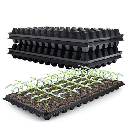 10-Pack Seed Starter Kit