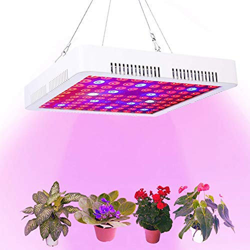 Calistouk 300W LED Grow Light Full Spectrum para Plantas de Invernadero hidropónicas de Interior Veg and Bloom 100pcs 3W LED (300W)