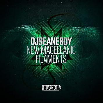 New Magellanic Filaments