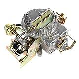 ALAVENTE 2 Barrel Carburetor for Ford F150 F250 F350 Comet Mustang Engine 289 302 351 & Jeep Wagoneer 360 Cu Engine (Automatic Choke)