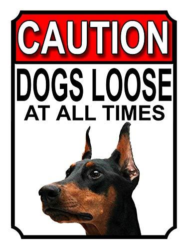 KELLEN WHITEHEAD Caution Dogs Loose AT All Times Metal Gate Sign Doberman Pinscher (1194) Cartel Divertido de la decoración del Tablero del Arte del Metal de la Muestra de Pared