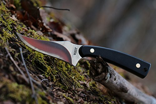 Old Timer 152OT Sharpfinger 7.1in S.S. Full Tang Fixed Blade Knife with 3.3in Clip Point Skinner Blade and Sawcut Handle…