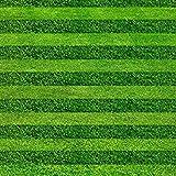 GEOPONICS Turf s Samen Golf Fußballfelder eine spezielle Klasse Evergreen Rasensamen 200pcs High-Grade und Samen