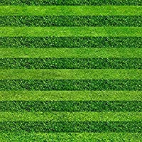 200種子/バッグ芝草の種ゴルフサッカー場別荘特別グレード常緑の芝生の種高級花と種