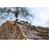 –Ganchos para cinta métrica forestal tipo C