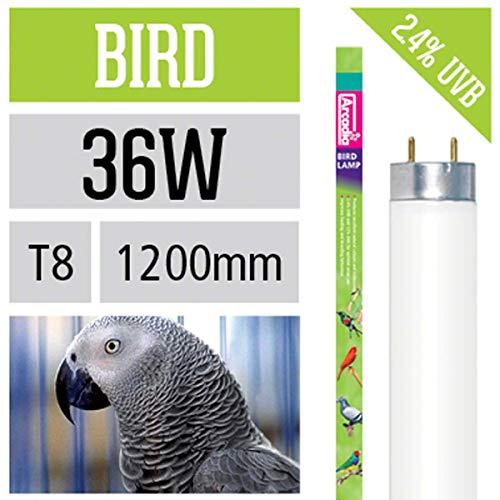 arcadia bird lamp leuchtstoffroehre