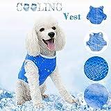 UpPaws 犬服夏用 猫服 夏服 夏用 冷感 メッシュ クールベスト2020年モデル Latest design Dog Cat Summer Clothes Cooling Clothes (XS)