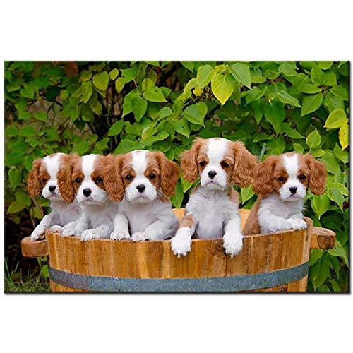 5D knutselen complete set naalden voor honden diamant schilderen vierkant ronde boormachine dier mozaïek borduurwerk verkoop strass muur decoratie 30x40cm