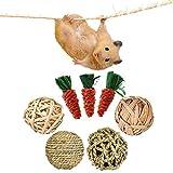 mellystore Juguetes para Masticar Conejito, 7PCS Pequeños Animales Juguetes para Masticar, Juguetes Conejo, Juguetes Hamster Morder, Juguete para Conejos Enanos, Hámster, Ratas, Chinchillas