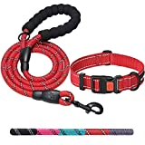 Ladoogo Heavy Duty Dog Leash - Comfortable Padded Handle, 5 ft Long - Dog Leashes for Small Medium Large Dogs (Leash+Collar XS Neck 10.5'-13.5', Red)