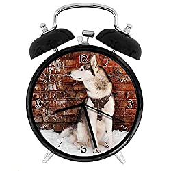 Alaskan Malamute, Domestic Pet Grungy Brick Wall and Snow Pedigree Animal Friend, Brown White Orange Twin Bell Alarm Clock with Backlight,Desk Table Clock for Home and Office 4in - Black