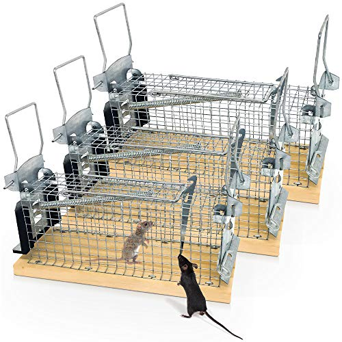 Mouse Trap, Pack of 3, Live Traps, Mice, Foam Protection Door, 100% Injury-free, 2 Transport Handles, Version 2.0, Includes Ebook, Contactless