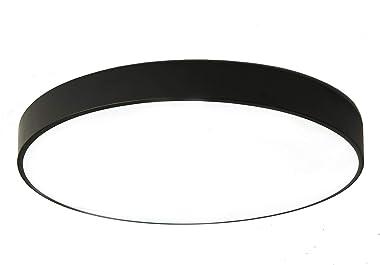 LuFun - Lámpara de techo LED empotrable, 24 W, 30.5 cm, moderna lámpara de techo redonda para armarios, cocinas, escaleras, s
