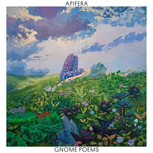 Apifera feat. Rejoicer, Nitai Hershkovits, Amir Bresler & Yonatan Albalak