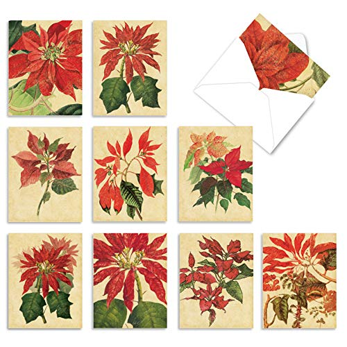 The Best Card Company - Box of 10 Holiday Note Cards - Christmas Cards Assorted, Xmas Trees and Landscapes (4 x 5.12 Inch) - Poinsettia Season M10012XS