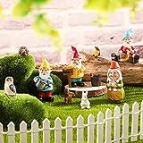 10 Piezas Kit de Accesorios de Jardín de Gnomos Hadas Adorno en Miniatura Pintado a Mano Decoraciones de Conejo Ardilla Pájaro Búho Erizo y Cubo para Patio Césped Adornos Interior Exterior