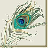 Ideal Home Range 40 Count 3-Ply Paper Cocktail Napkins (Peacock Feather)