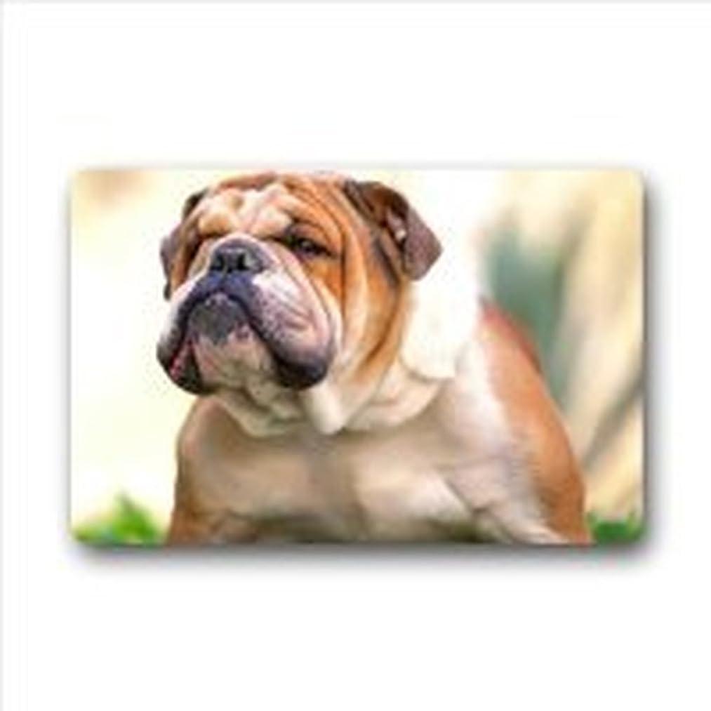 Hi,Doormat Lovely English Bulldog Polyester Fiber Indoor/Outdoor Doormat Door Mat 23.6 x 15.7 Inches