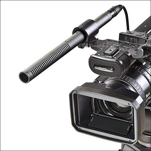 Audio-Technica AT897 Line/Gradient Shotgun Condenser Microphone (Renewed)