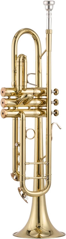 Trumpet Professional Dedication Las Vegas Mall Wind Instrument Brass Lacquered Gol