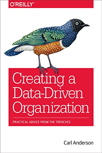 Creating a Data-Driven Organization: Practical Advice from the Trenches (English Edition)