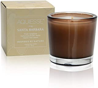 Premium Scented Candle, Soy Wax Blend With Natural Unique Fragrance Recovery Energy, Stress Relief, Boost Mood, Made in USA (Santa Barbara)