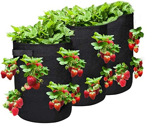 NASUM Strawberry Grow Bags 3 Pack 10 Gallon Garden Vegatable Flower Plant Growing Bags with product image