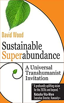Sustainable Superabundance: A Universal Transhumanist Invitation (Transpolitica Book 4) by [David Wood]