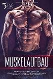 Muskelaufbau: Mit Krafttraining-, richtiger Ernährung und effektiven Trainingsplänen zum wohlverdienten Traumkörper. - FIVEHANDSUP