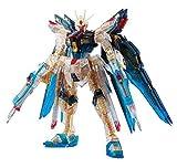 Bandai RG 1/144 Strike Freedom Gundam Clear Color Ver. (Japan Import)