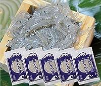 静岡県 駿河湾産 鮮度最高 生 しらす 100g×5袋 (冷凍)( シラス )