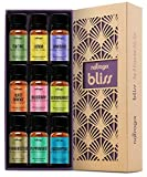 Natrogix Bliss Essential Oils - Top 9 Therapeutic Grade 100% Pure Essential Oil Set 9/10ml (Tea...