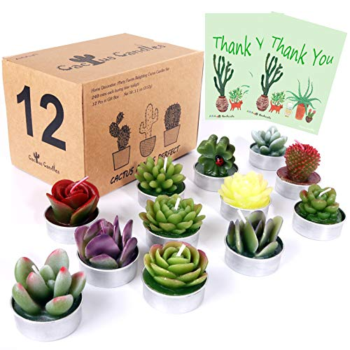 AIXIANG 12Pcs Cactus Candles Succulent Candles, Wedding Party Favors for Guests, Bridal Shower Candles Favors