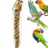 JXCG Support de Nourriture pour Oiseaux, Jouets de Recherche de...