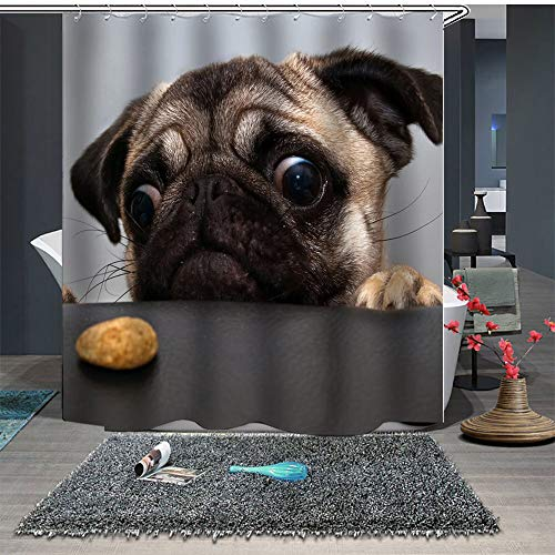 Chickwin Duschvorhang Anti-Schimmel und Wasserdicht, 3D Creative Haustiere Welpen Drucken Duschvorhang mit 12 Duschvorhangringe für Badezimmer (180x180cm,Mops)
