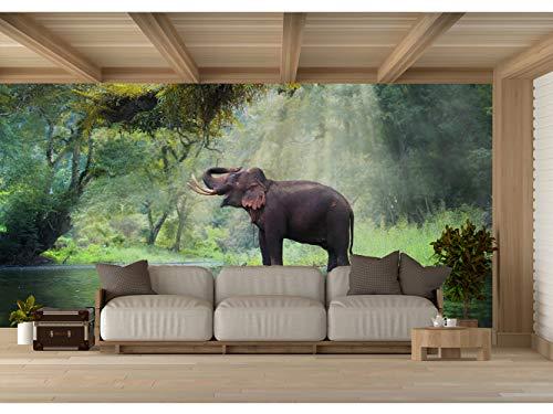 Fotomural Vinilo para Pared Elefante en Bosque Tailandia   Fotomural para Paredes...