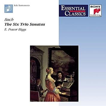 Bach: 6 Trio Sonatas for Organ, BWV 525-530 (Version for Harpsichord)