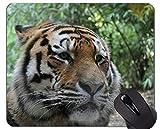 Yanteng Cojín de ratón del Tigre del Animal Salvaje, Alfombrillas de ratón Allwetterzoo
