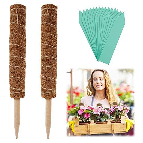 N / C 2 Stück Pflanzstab Kokos, 45cm Rankstab, Rankhilfe Blumenstab mit 15 Holzetiketten, Bambusstangen Kokosstab Stützpfahl Holz aus Natürlicher Kokosfaser Verlängerbar für Pflanzen Kletterpflanzen