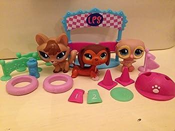 Littlest Pet Shop Playpack - Pet Trainin  Park