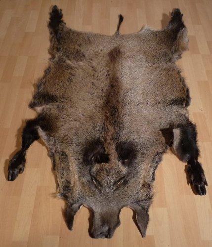 XXL WILDSCHWEINFELL Wildschwein echtes Fell Schwarzwild
